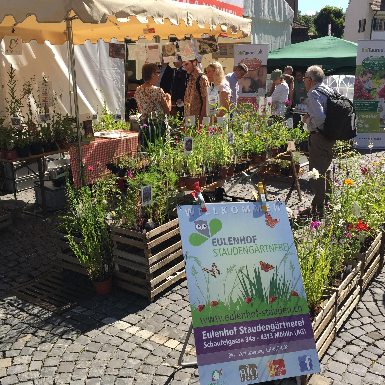 , Events, Eulenhof - Staudengärtnerei